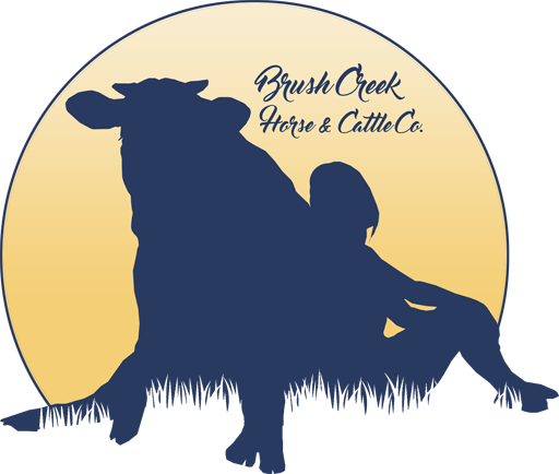 Brush Creek Horse and Cattle Co.
